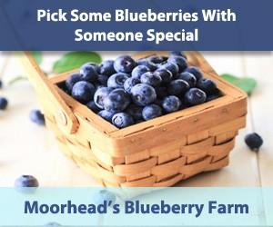 Moorhead's Blueberry Farm