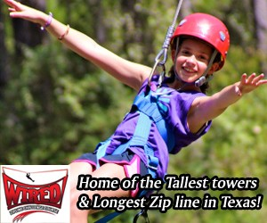 Wired Zipline Challenge Course Dallas