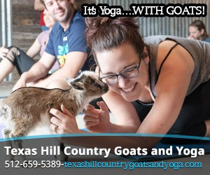 Texas Hill Country Goats and Yoga